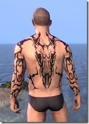 Wyrd Root Tattoos - Male Back