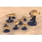 Mushroom, Spongecap Patch