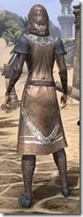 Telvanni Wizard-Lord Robe - Female Back