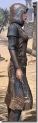 Telvanni Wizard-Lord Robe - Female Close Side