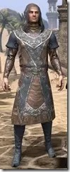 Telvanni Wizard-Lord Robe - Male Front