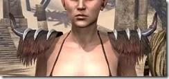 Falkreath Pauldron - Female Front
