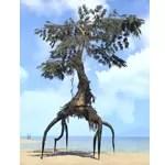 Fabricant Tree, Gnarled Cypress