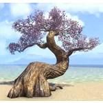 Fabricant Tree, Vibrant Cherry Blossom