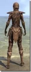 Phaer Mercenary - Female Back