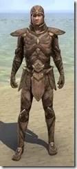 Phaer Mercenary - Male Front