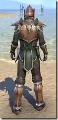 Vanguard Uniform - Male Back