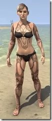 Clockwork Apostle Body Imprints - Female Front