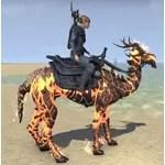 Flame Atronach Camel
