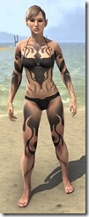 Inferno Ink Body Markings - Female Front