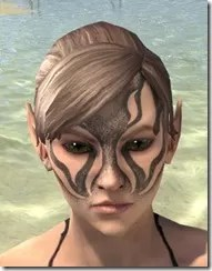 Inferno Ink Face Markings - Female Front