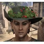 Winter Garland Broadbrim