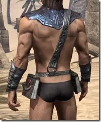 Fang Lair Ancestor Silk Jerkin - Male Rear