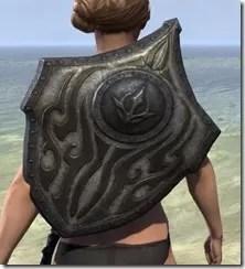 Outlaw Beech Shield