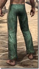 Prisoner Style 1 Trousers - Male Rear