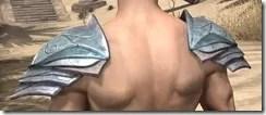 Glass Iron Pauldron - Male Rear