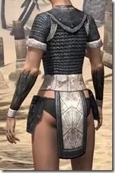 Nord Iron Cuirass - Female Rear