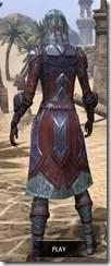 Dark Brotherhood Iron - Dyed Rear