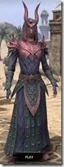Ebonheart Pact Homespun - Dyed Robe Front
