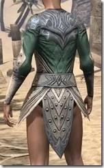 Ebonheart Pact Homespun Jerkin - Female Rear