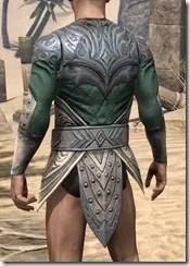 Ebonheart Pact Homespun Jerkin - Male Rear