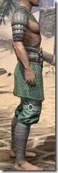Minotaur Homespun Robe 1- Male Right