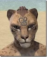 Necromatic Sigil Face Tattoos - Khajiit Front
