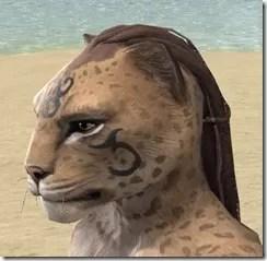 Necromatic Sigil Face Tattoos - Khajiit Side