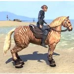 Pellitine Mustang