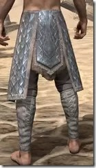 Skinchanger Iron Greaves - Male Rear