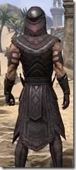 Elemental Succession - Male Robe Close Rear