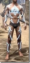 Body Imprint of the Psijic Order Male Front