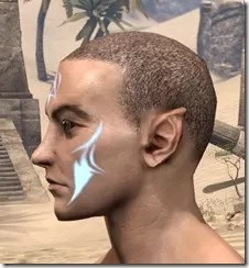 Face Imprint of the Psijic Order Male Side