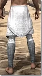 Pyandonean Iron Greaves - Male Rear