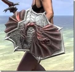 Pyandonean Ruby Ash Shield 2