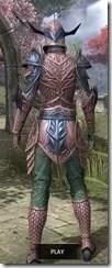 Auroran Knight Dyed Rear