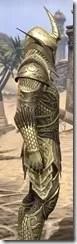 Auroran Knight Male Close Side