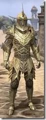 Auroran Knight Male Front