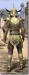 Auroran Knight Male Rear