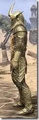 Auroran Knight Male Side