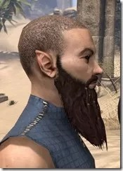 Ringed and Gathered War Beard Side