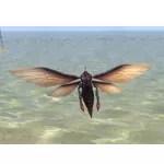 Skein Wasp