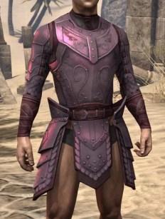 Master Adventurer Purple