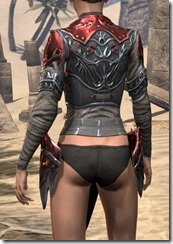 Firedrake Cuirass - Female Rear