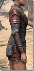 Silver Dawn Heavy Cuirass - Female Right