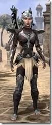 Welkynar Ancestor Silk - Female Shirt Front