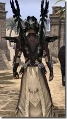 Welkynar Ancestor Silk - Male Robe Close Rear