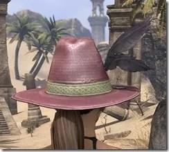 Werewolf Hunter Hat - Dyed Rear