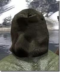 Hollowjack Spectre Mask - Argonian Rear