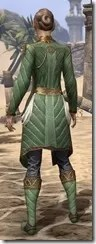 Kinlord's Alinor Attire Female Rear